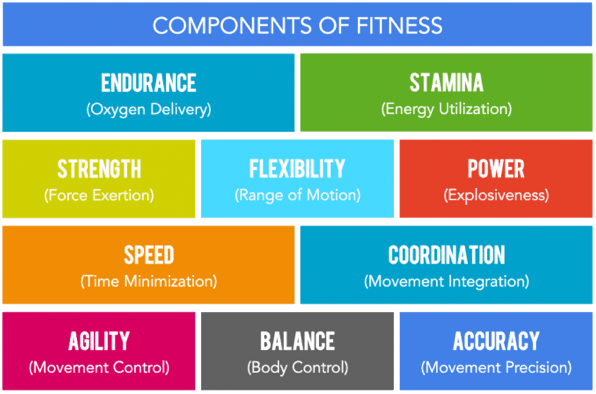 10 components of fitness